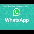 120x120 - Get the best wallpapers for Whatsapp!