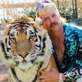 70x70 - Tiger King Quiz