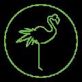 70x70 - GreenFlamingo